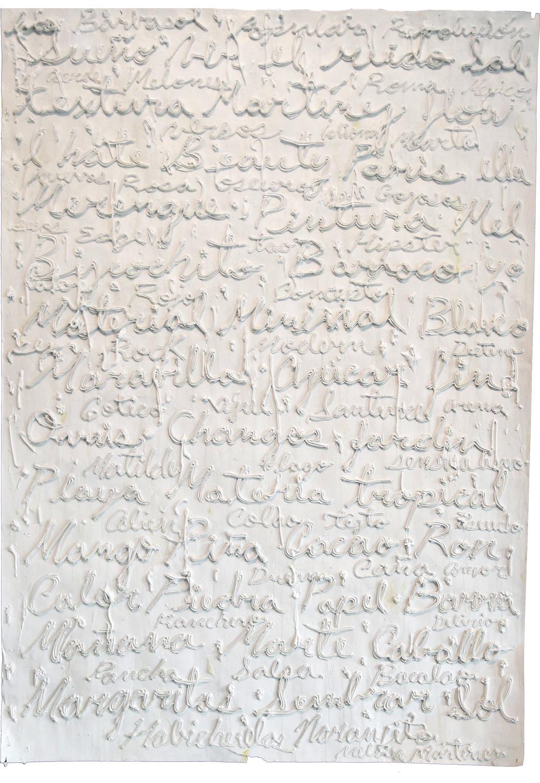 Serie texto y textura [Habichuelas naranjito], 2014  Mixed media on paper 60 x 42 inches