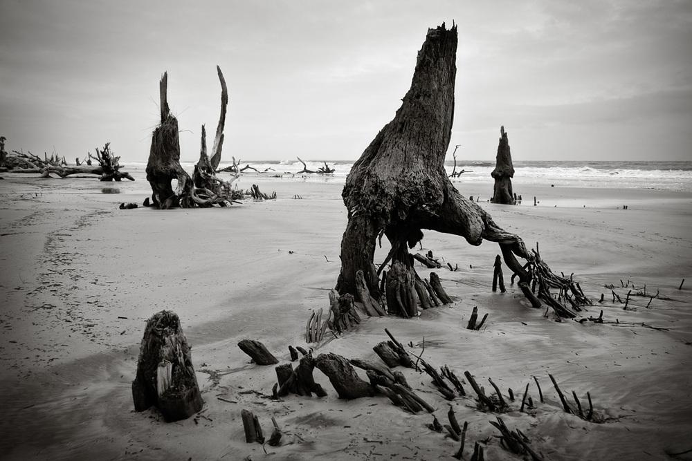 Beach-4560BWLoRes.jpg