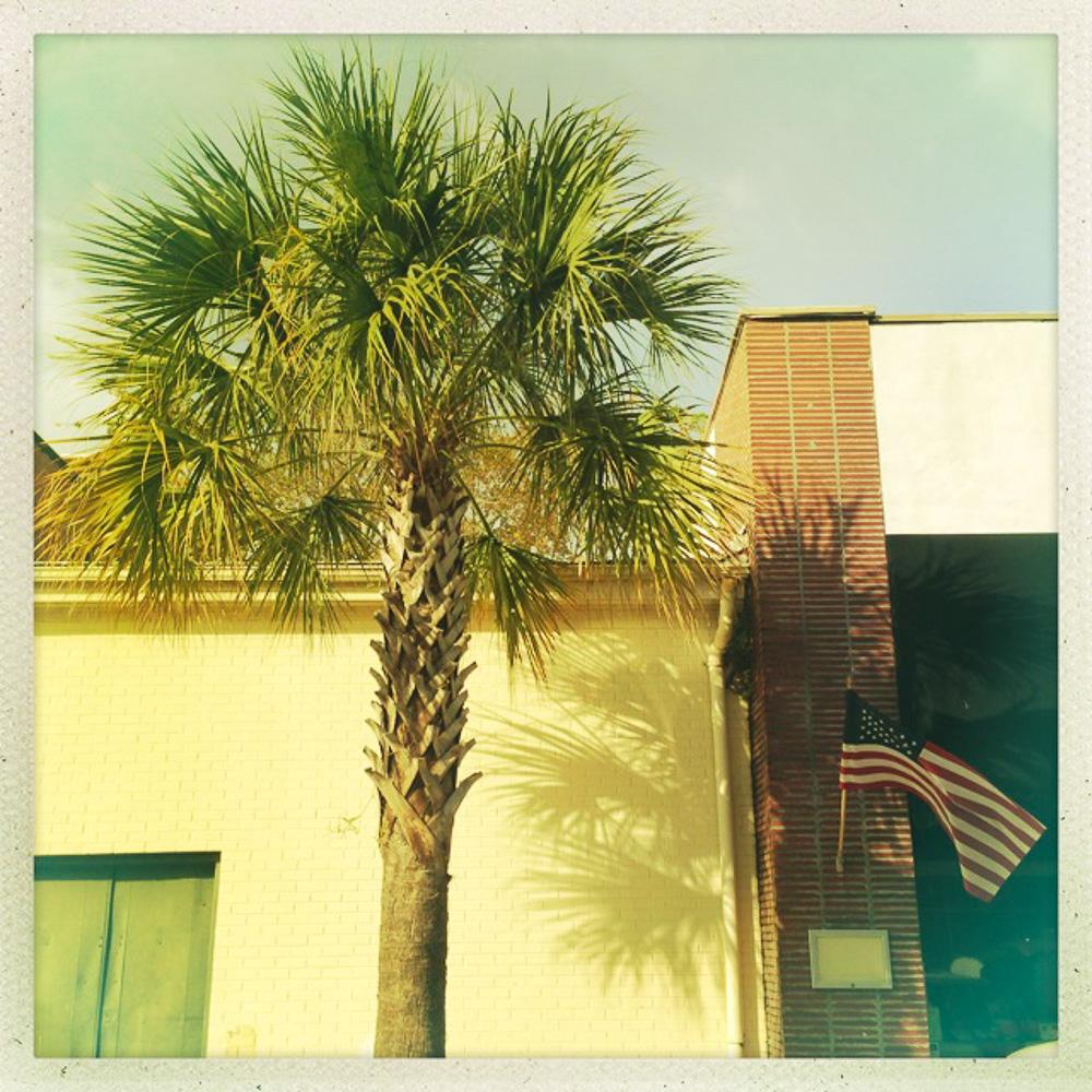 tree_flag.jpg
