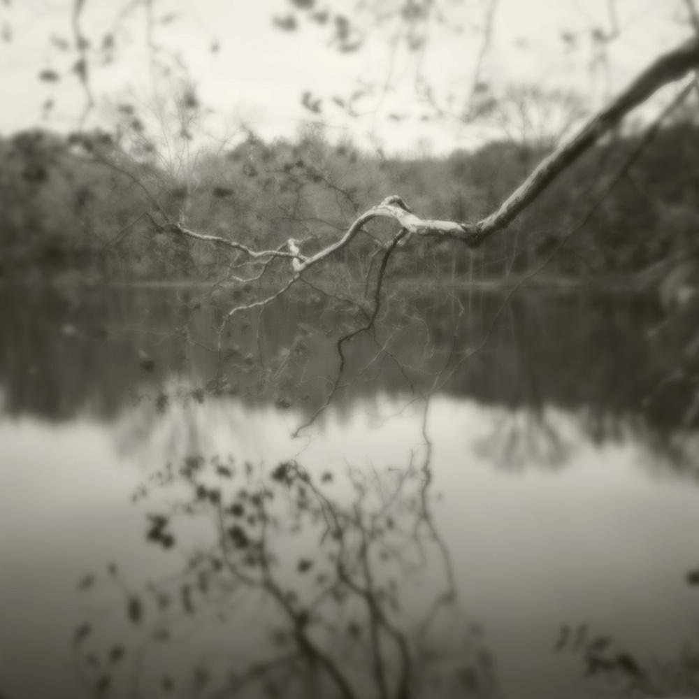 PH limb over lake B&W blur soft light.jpg