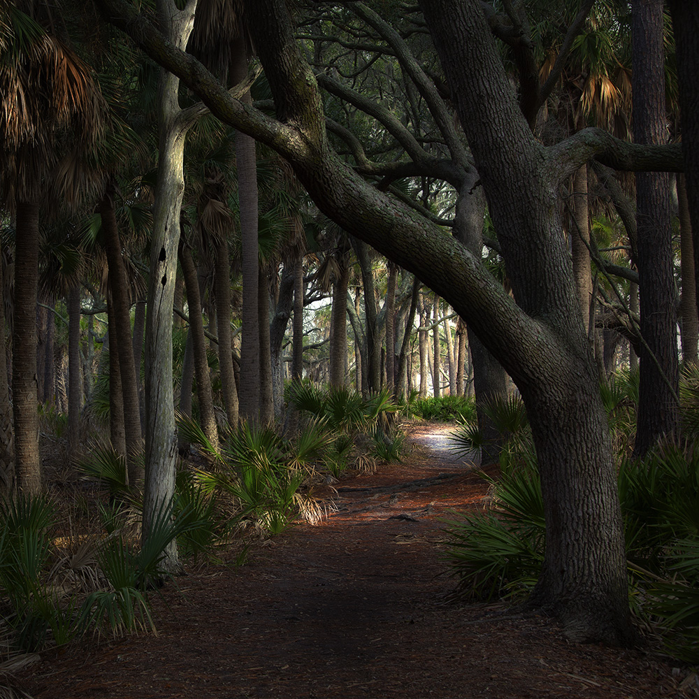 Path .jpg