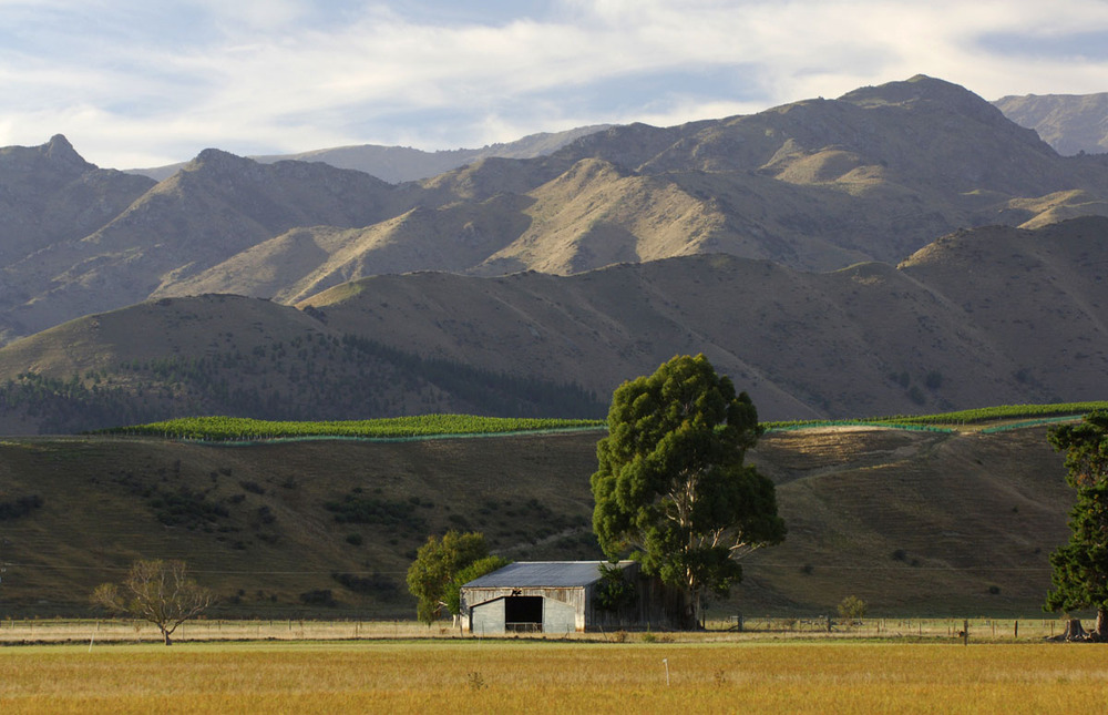 Ant Moore | Waihopai Valley | Marlborough