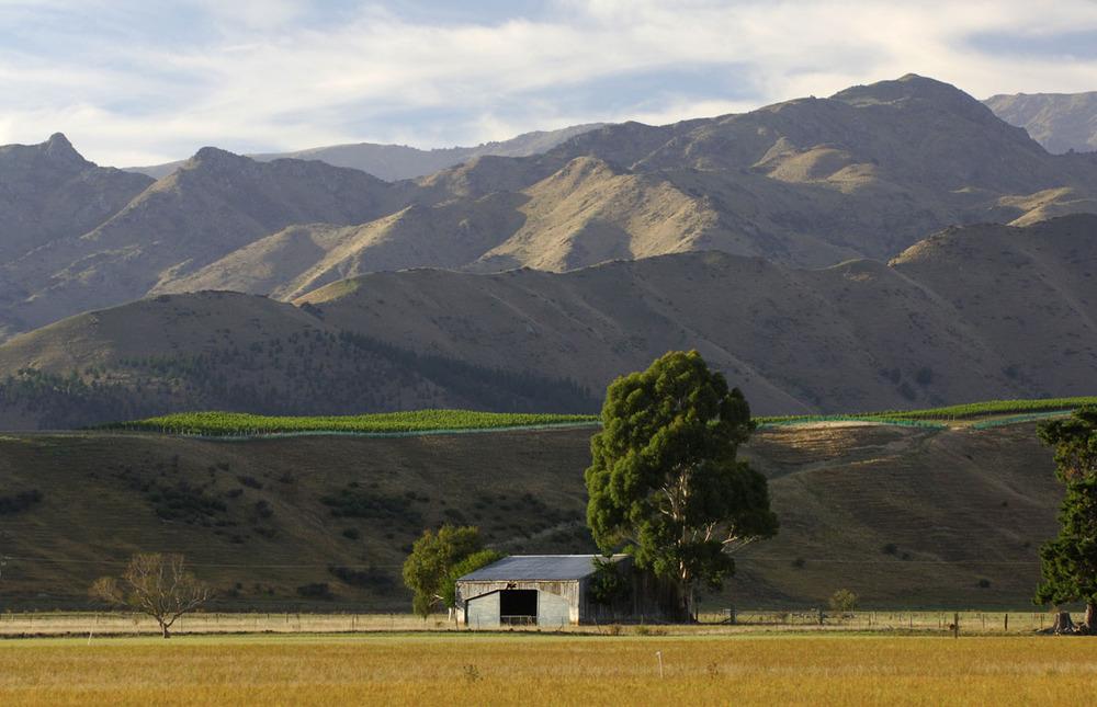 Ant Moore | Waihopai Valley | Marlborough