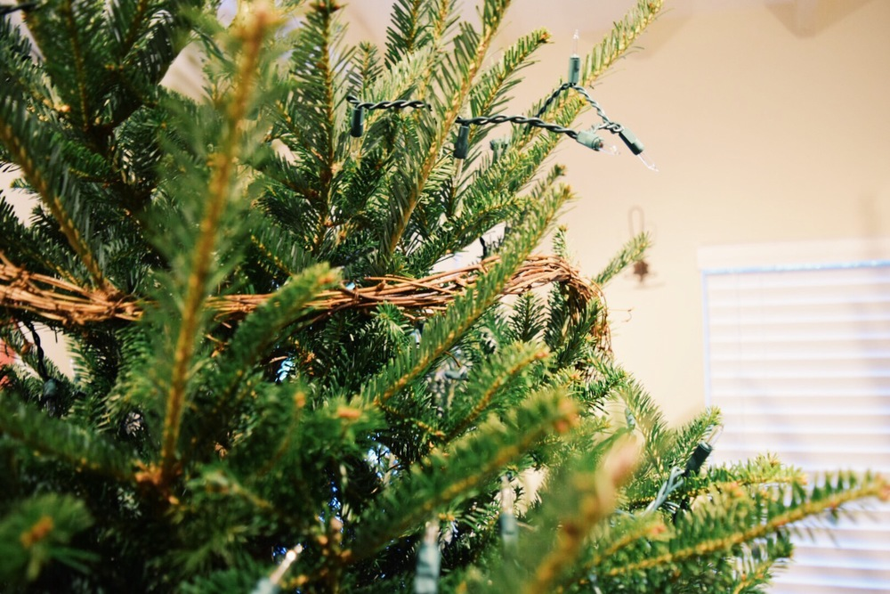 xmas tree twig wrap 2.jpg