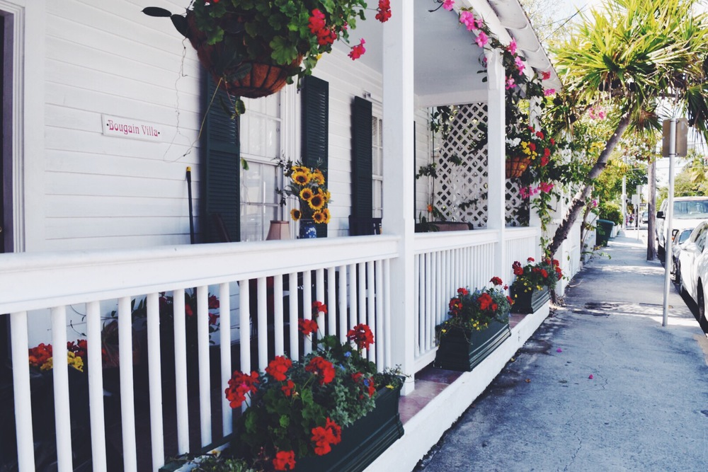 5 Reasons to visit Key West, Florida
