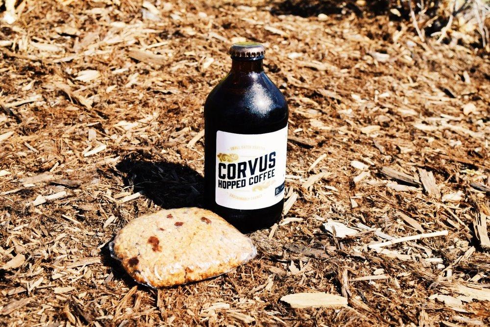 colorado coffee beer