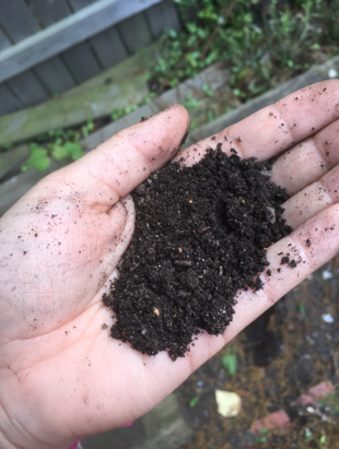 Here's what compost looks like.