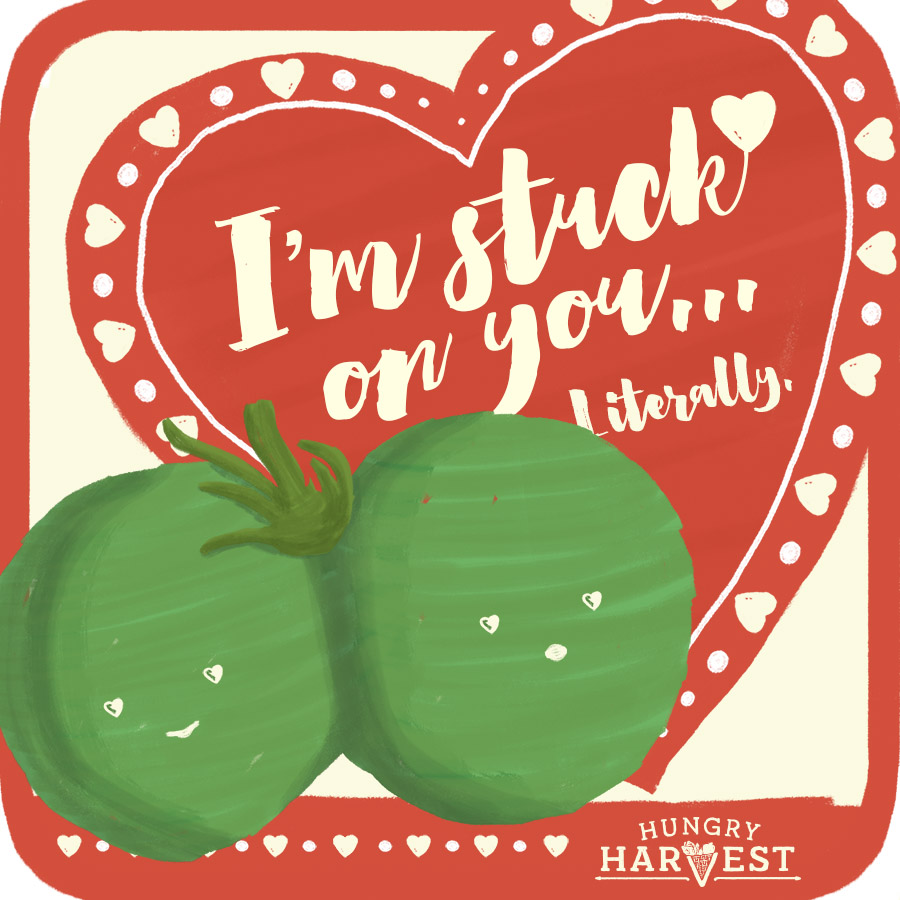 I'm Stuck on YouShareable Square - Want to send the twin tomato love to all your pals on social? Just click the download button below & share away!
