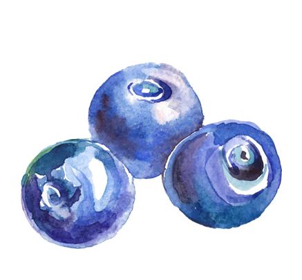 blueberryicon.jpg