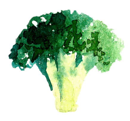 broccoliicon.jpg