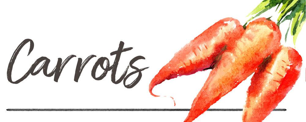 carrotsheader2.jpg