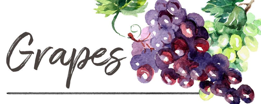 grapesheader.jpg