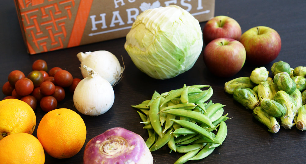 6 Easy & Awesome Recipe Ideas for This Week's Harvest -