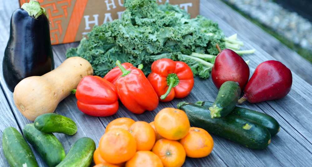 7 Easy & Awesome Recipe Ideas for This Week's Harvest -