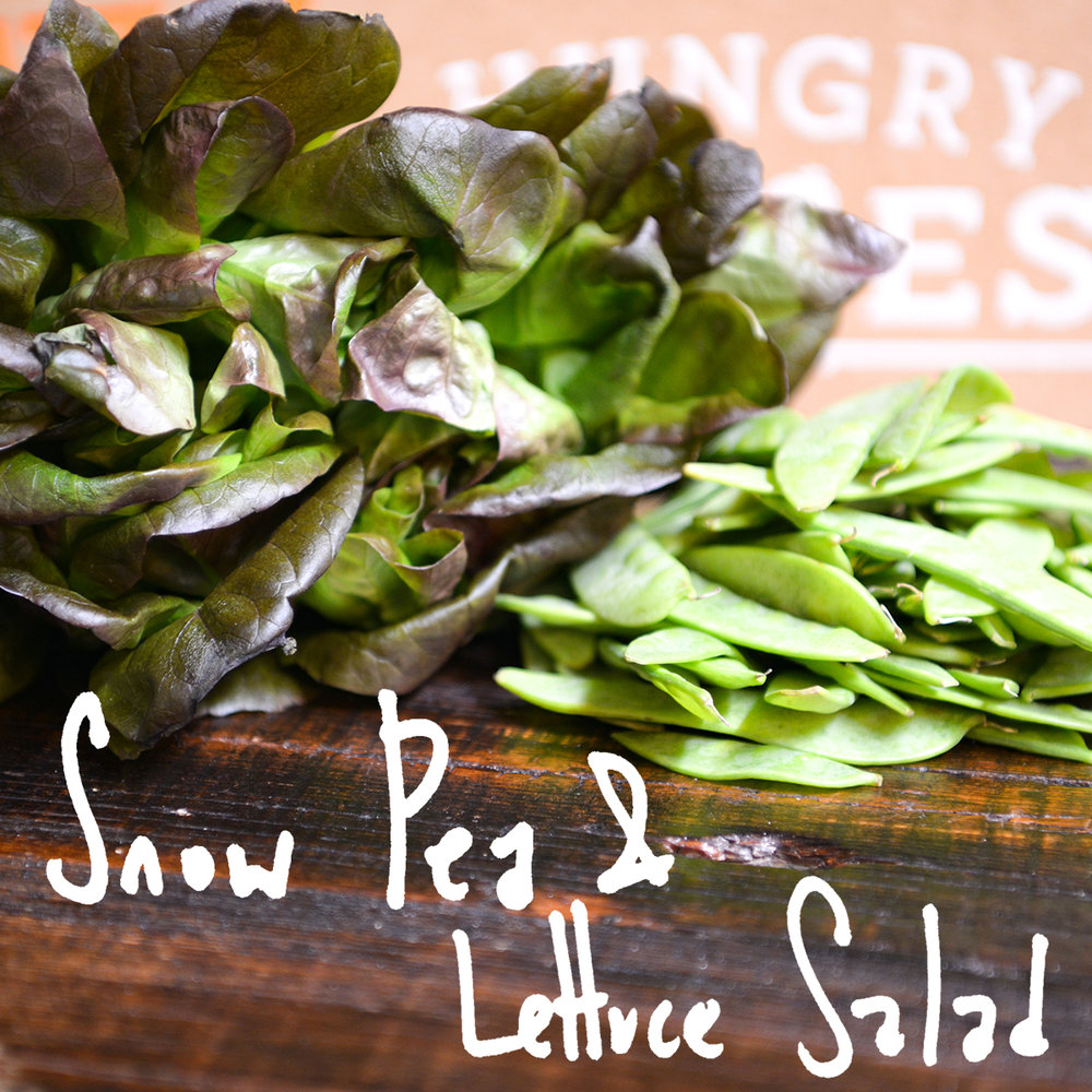 Lettuce and snow peas are tossed in a light vinaigrette with some crunchy croutons added in for good measure. - Find the recipe at: All Recipes