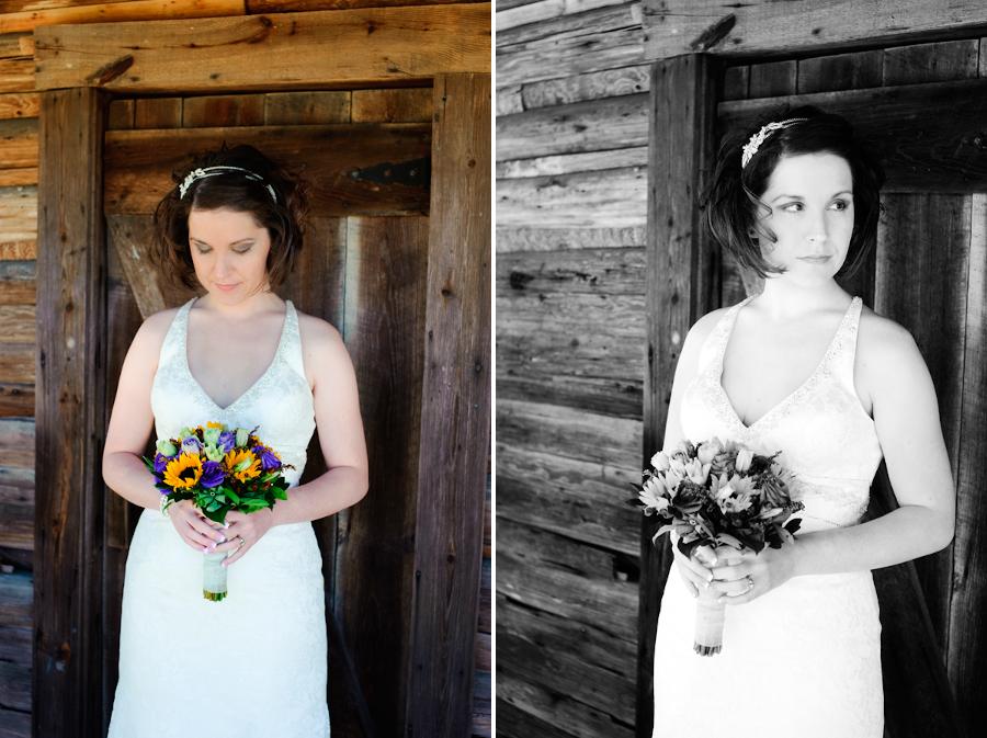 Wedding_101108_Evers_Alderman_023_blog