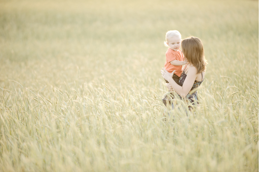 Florida Wheat Field Family Portrait Photography