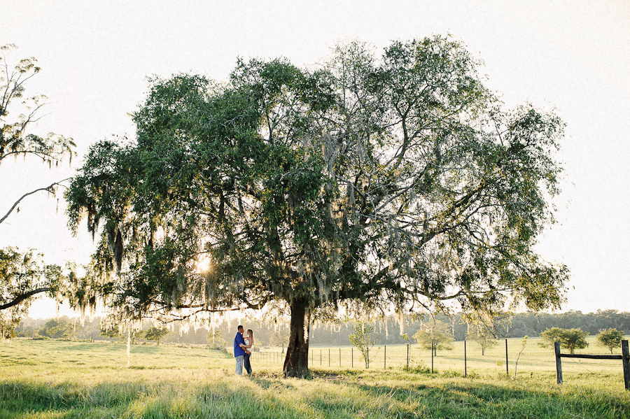 engagement under a big oak tree