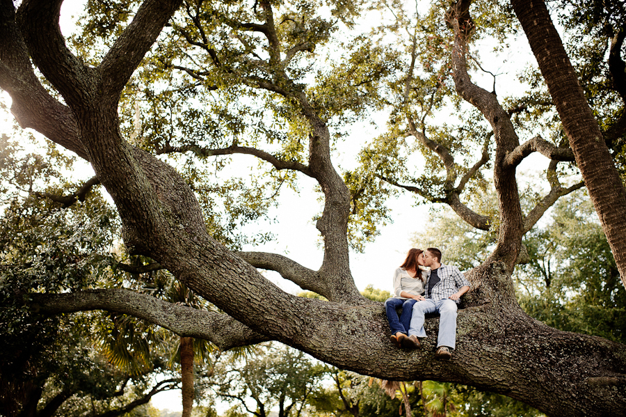 Love in an Oak Tree