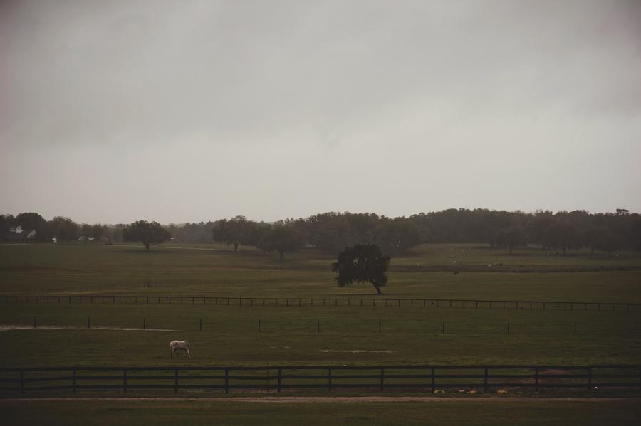Barrington Hill Farm FL