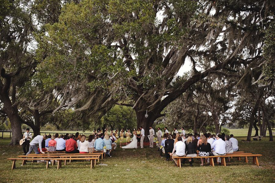 FL wedding under a large oak tree | Barrington Hill Farm