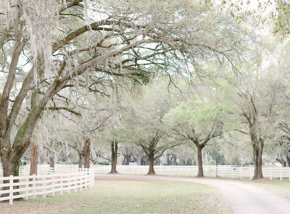 Rocking H Ranch Wedding Venue Florida