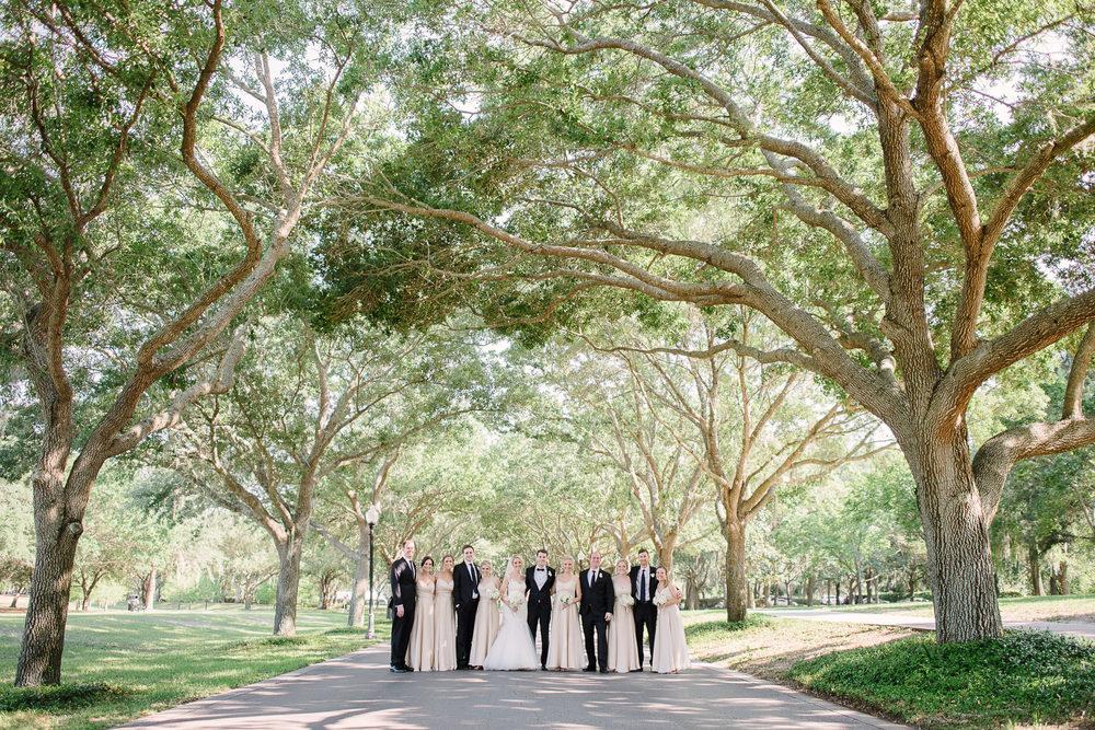 Giant Oak Tree Lined Street Wedding