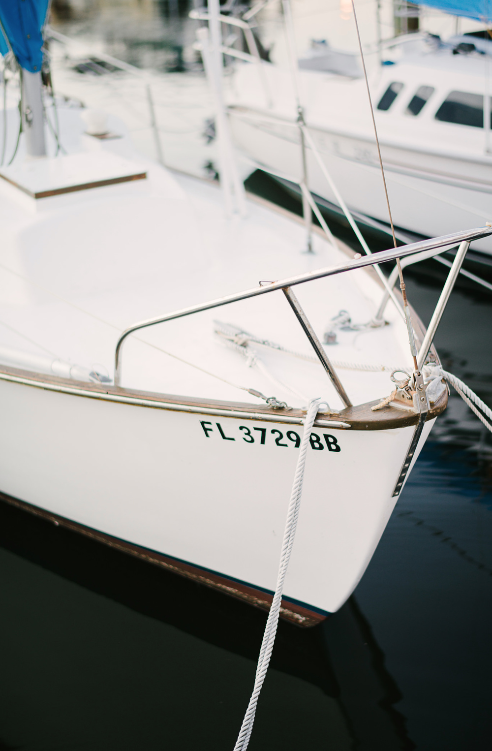 Saint Petersburg Florida Marina