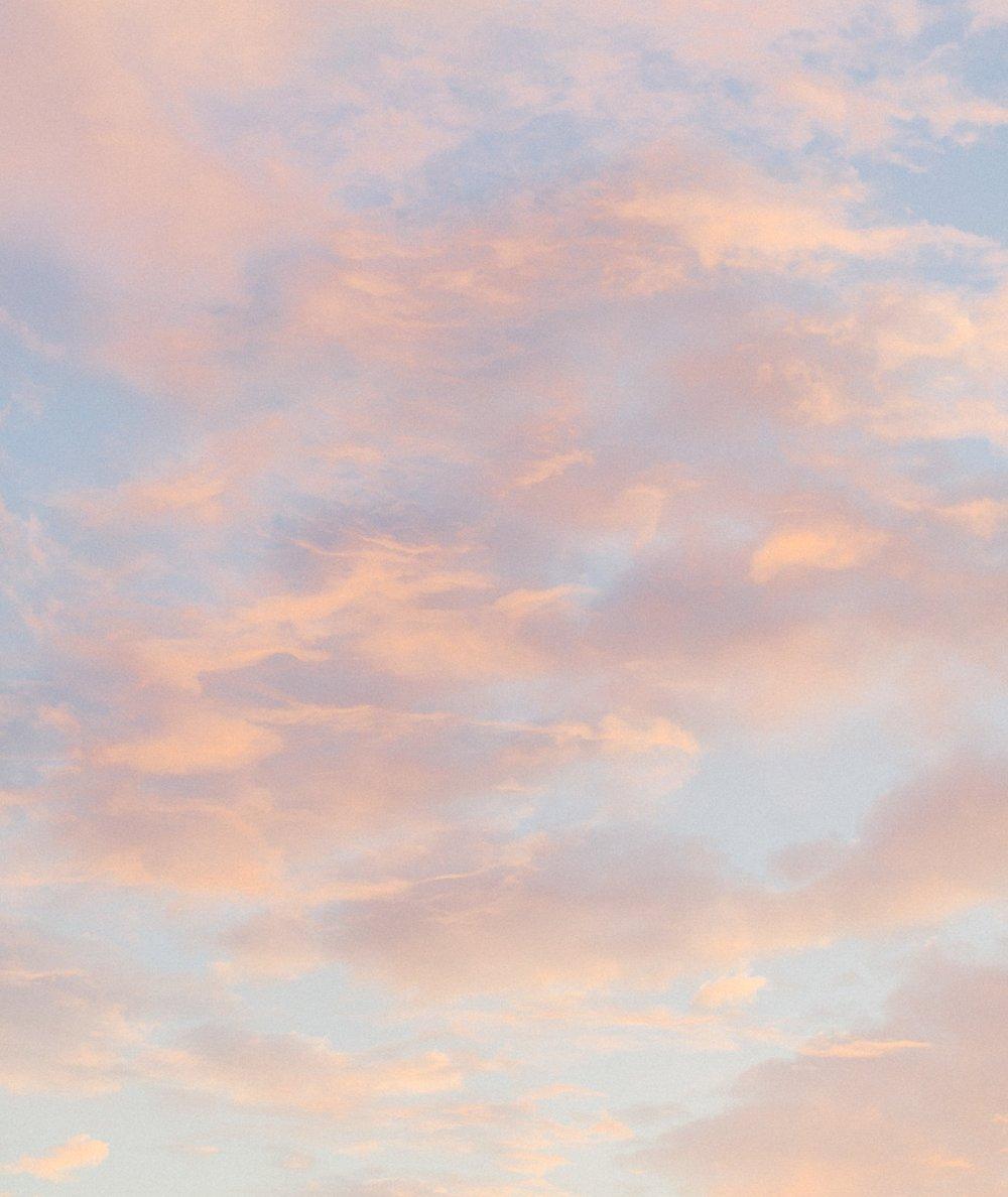 Orange Grove Sunrise Engagement Session | Sunglow Photography
