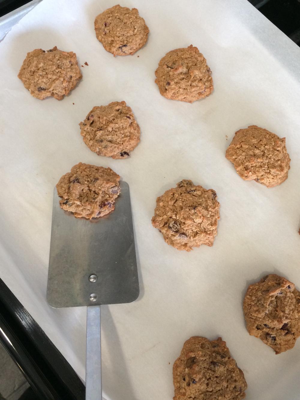 noatmeal cookies3
