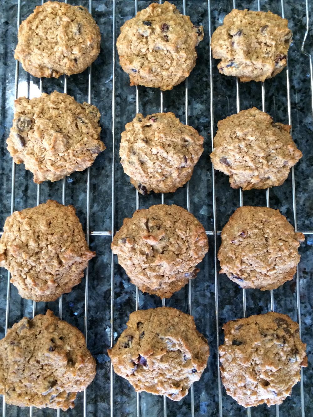 noatmeal cookies2