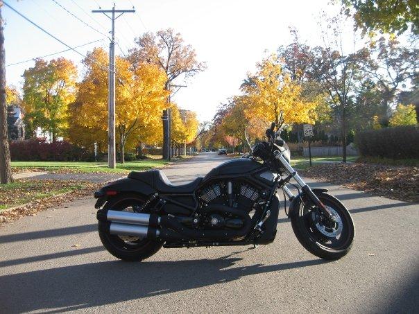 """Rogue"" - 2010 Harley Davidson Night Rod Special"