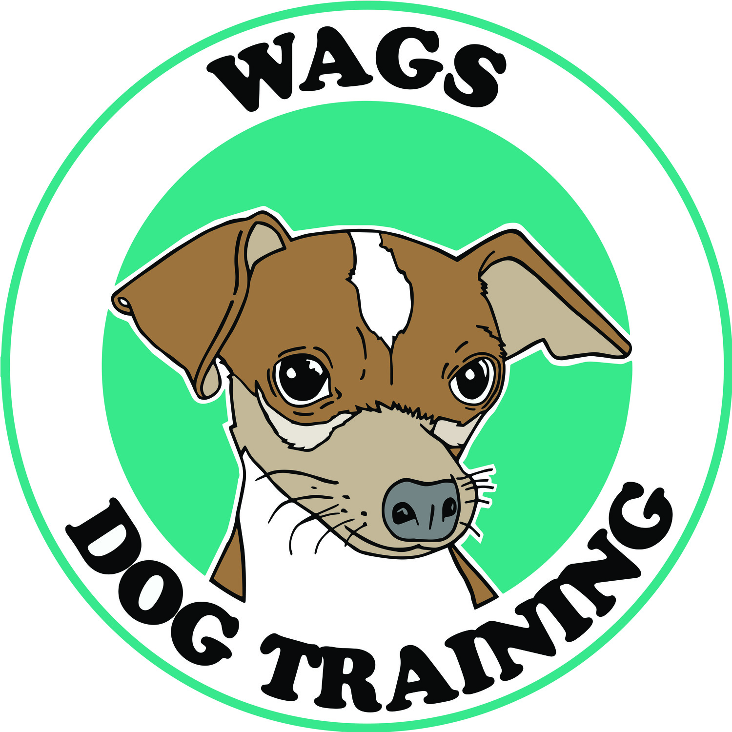 WAGS DOG TRAINING