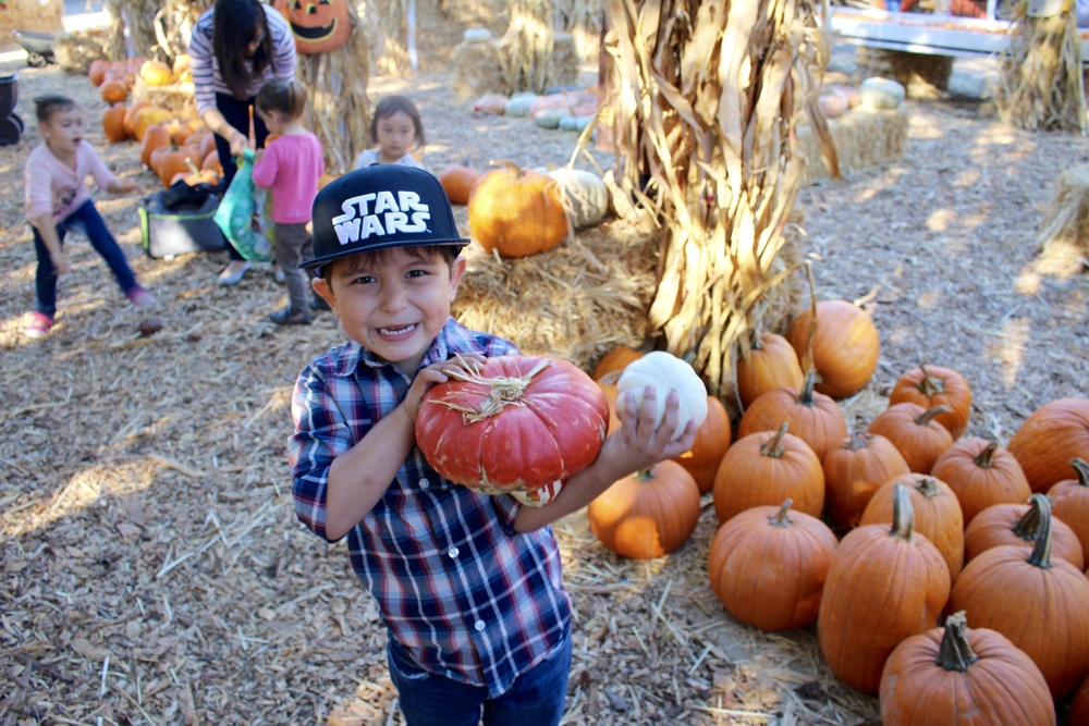 He was so excited to find different looking pumpkins.