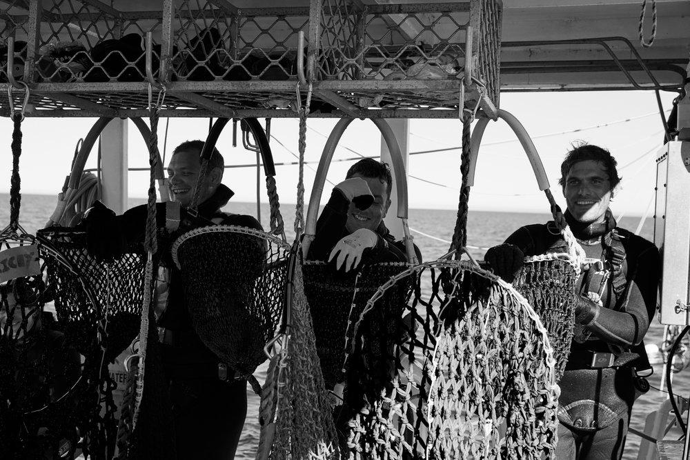 Paspaley pearl divers | Vogue Australia
