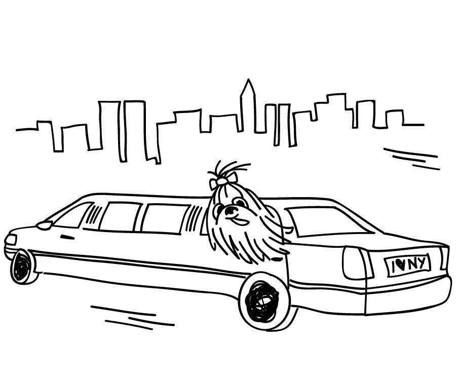 Chapter 6 :  Manhattan Dog