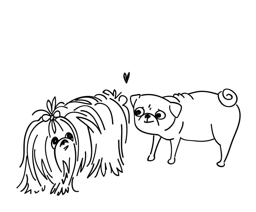 Chapter 7 :  Dog meet Dog