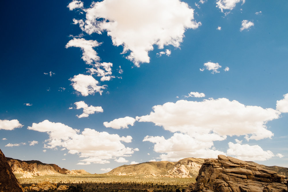 Desert_Travel-13.jpg
