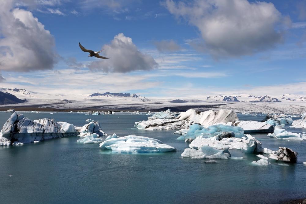 1306_Islande_1905_co.jpg