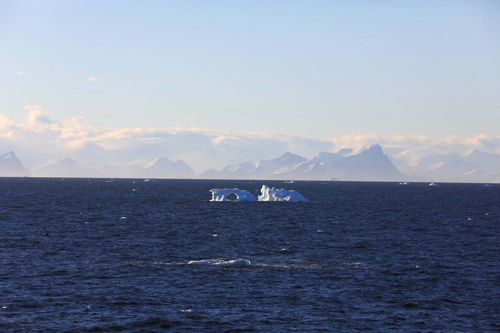 1702_Antarctique_01487_c_sm.jpg