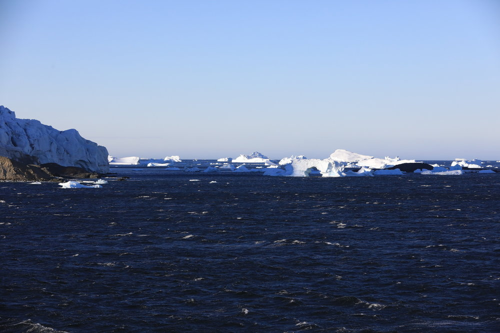 1702_Antarctique_01747_c_sm.jpg