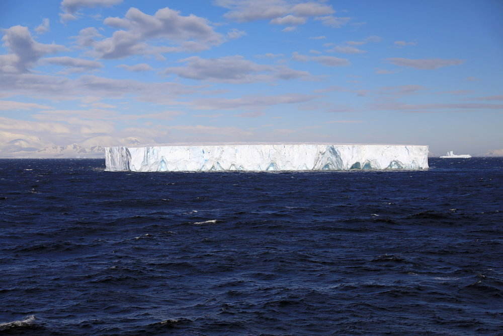 1702_Antarctique_02188_c_sm.jpg