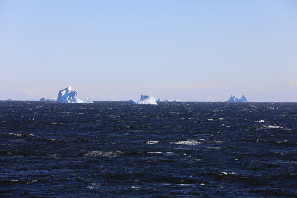 1702_Antarctique_02305_c_sm.jpg