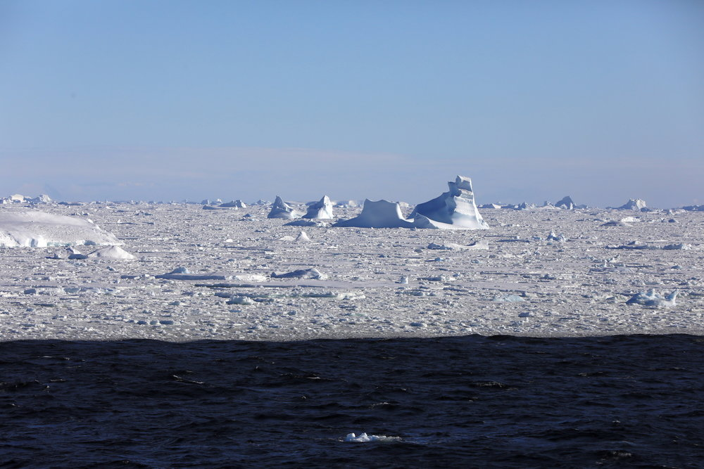 1702_Antarctique_02566_c_sm.jpg