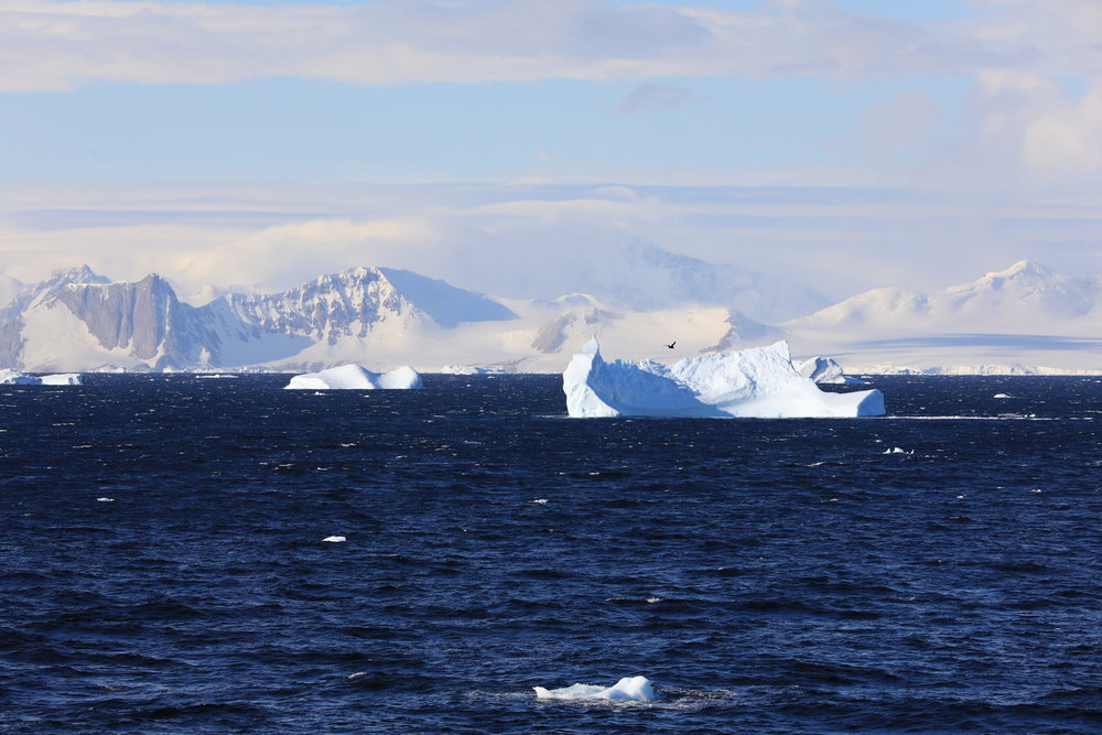 1702_Antarctique_02665_c_sm.jpg