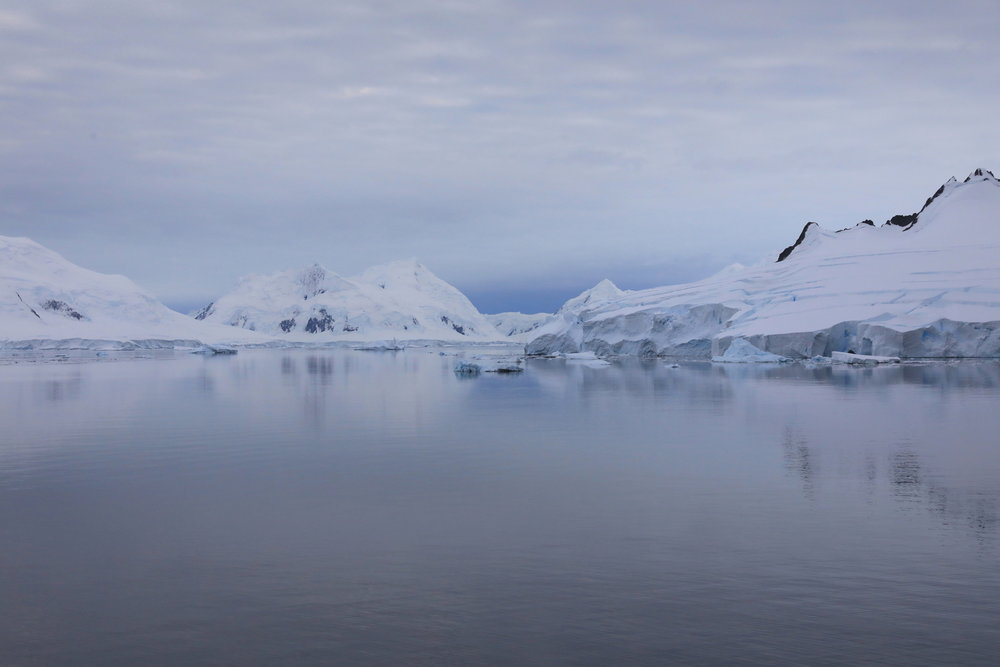 1702_Antarctique_03929_c_sm.jpg