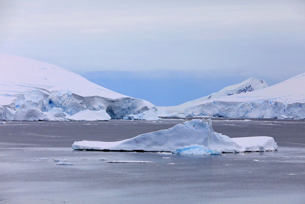 1702_Antarctique_04097_c_sm.jpg