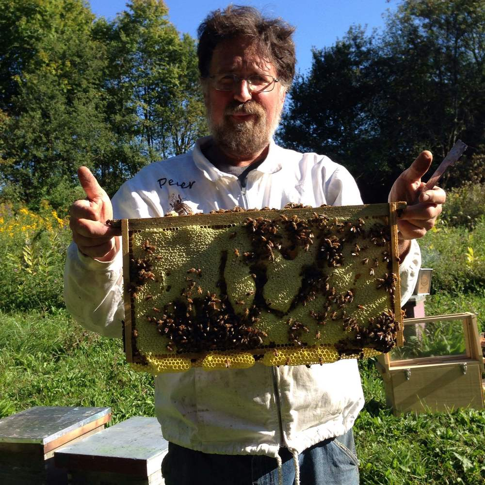 This is my dad pulling some frames out to look for queens. On this frame, the bees have built some very interesting-looking comb.
