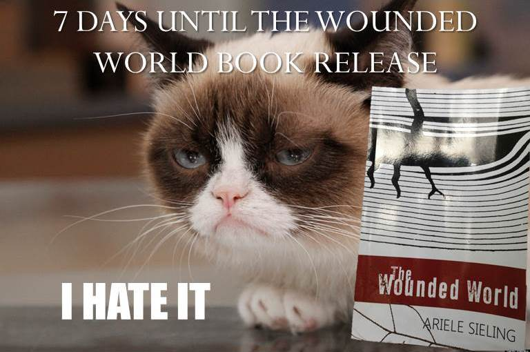 GrumpyCat-BOok.jpg