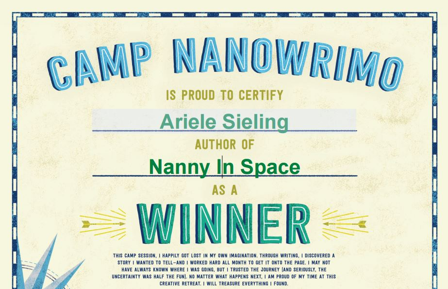 camp-nano-award-2015